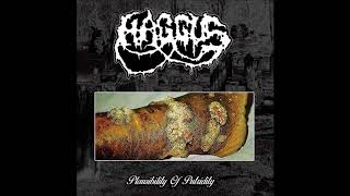 Haggus - Plausibility Of Putridity LP (2018) Full Album HQ (Goregrind/Mincecore)