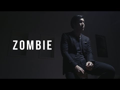 Zombie - The Cranberries | BILLbilly01 ft. Tan Cover