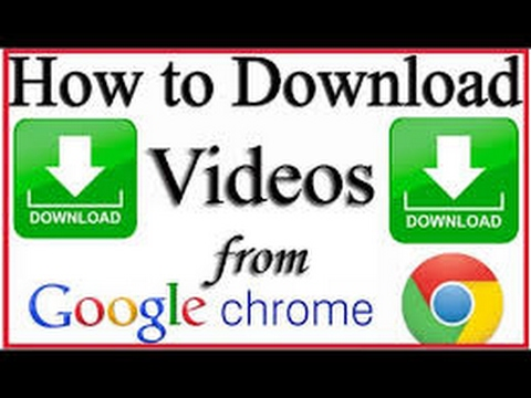 how to download videos of any website