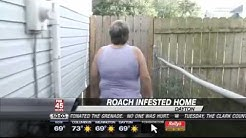 Cockroaches Infest East Dayton Home