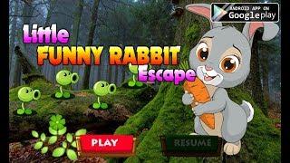 Avm Little Funny Rabbit Escape Walkthrough [AvmGames]