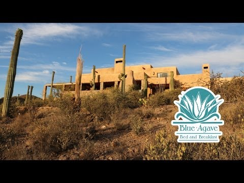 Blue Agave Bed and Breakfast | Tucson B&B