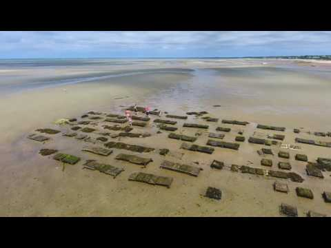 Brewster, Cape Cod Flats at Low Tide : 4k Drone Video
