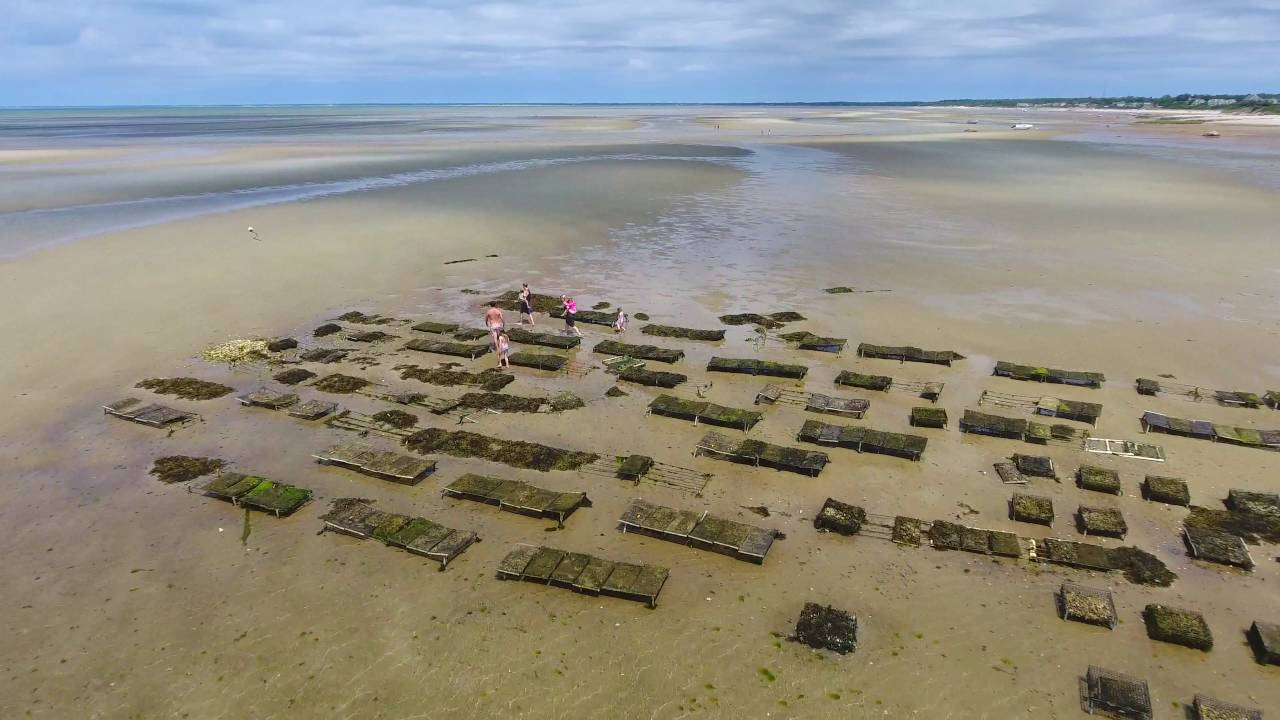 Charming Cape Cod Low Tide Part - 8: Brewster, Cape Cod Flats At Low Tide : 4k Drone Video - YouTube