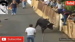 Best funny VIDEOS / funny bull fighting fiestival