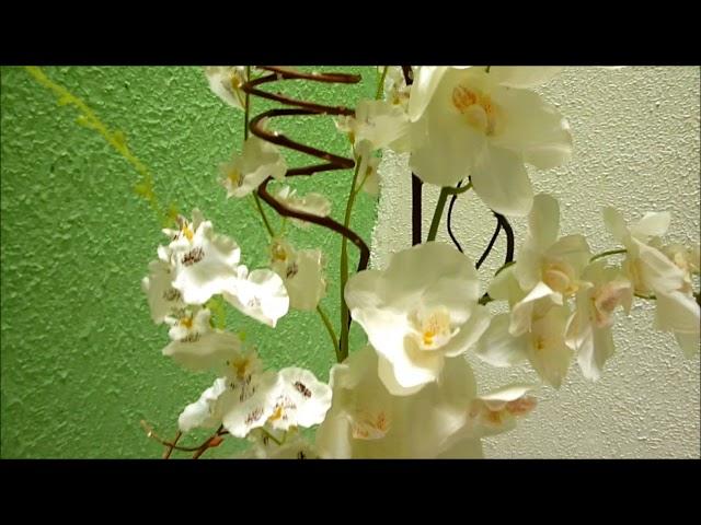Arranjo de chão orquídea branca