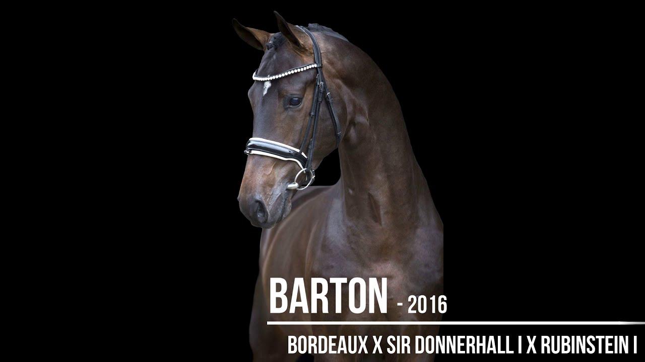 Barton VDL pour Vai Bruntink