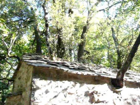 Η Αγία Θεοδώρα με τα 17 δέντρα στη σκεπή της. Αρκαδία