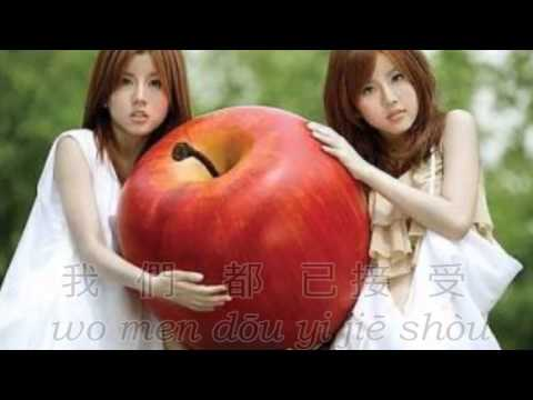 我知道 wo zhi dao - I know (with pinyin) by By2 Lyrics Video HD