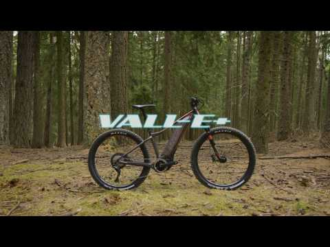 Introducing Vall-E+ |