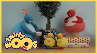 Twirlywoos Türkçe | Hepsi gitti | Sezon 1 Bölüm 7 | Çocuklar İçin Çizgi Filmler