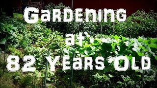 Tour & Harvesting Of My Grandfather's Vegetable Garden