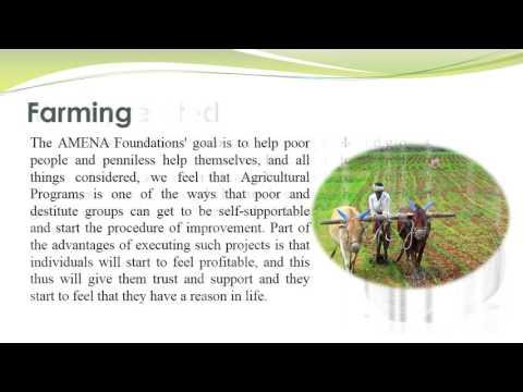 Amena Capital Groups & Services
