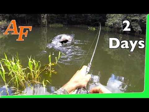 Catch n Cook 🔥 Tarpon Over Night Jungle fishing Adventure EP.351