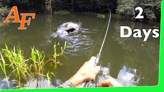 Catch n Cook 🔥 Tarpon Over Night Jungle fishing Adventure EP.351