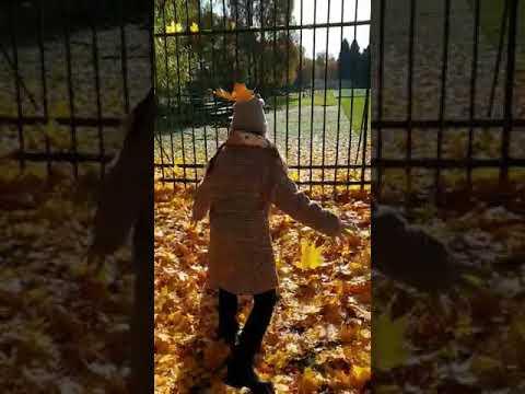 Золотая осень Василиса