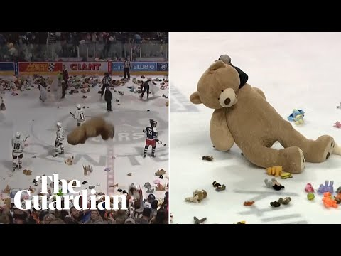 'It's Raining Stuffed Animals': 45,000 Teddy Bears Tossed On Ice In Hockey Game