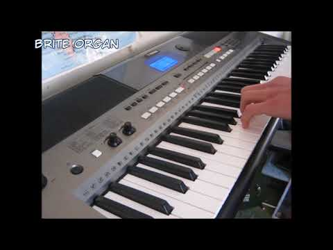 Yamaha PSR-E443 Voice Demo - Can You Guess The Songs?