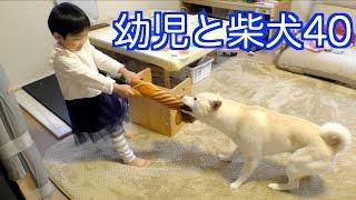 しろが食べてるのは犬用のジャーキーです。 https://www.youtube.com/ch...