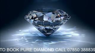 PURE DIAMOND NEIL DIAMOND TRIBUTE  SHOW