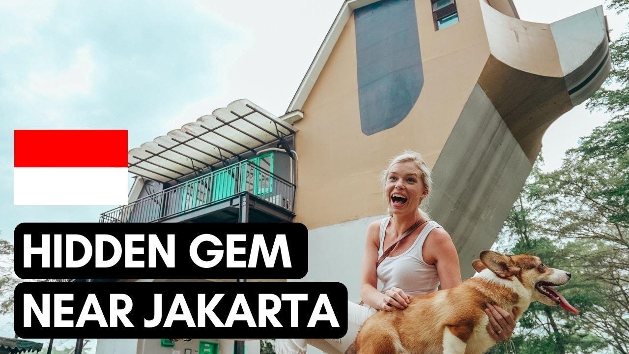 HIDDEN gem near JAKARTA 🐶🐴   APM Equestrian Centre   #Vlog 117