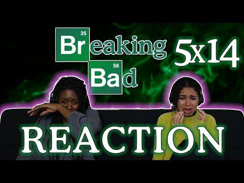 Breaking Bad 5x14 - OZYMANDIAS - REACTION PART 2!