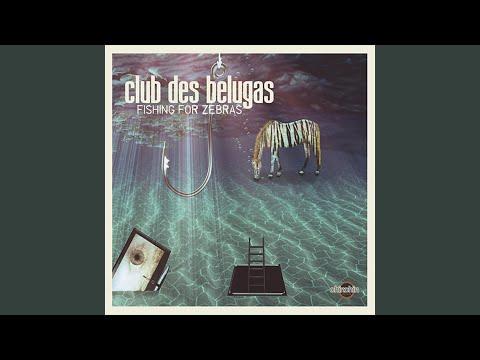 The Secret (Club des Belugas Remix)