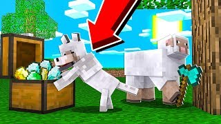 GIOCARE A MINECRAFT DA ANIMALI! *INCREDIBILE*