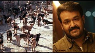 Mohanlal urges emphasis on ending stray dog menace