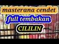 Masteran Cendet Isian Cililin Masteran Cendet Full Isian Cililin Cendet Gacor Full Isian Kasar  Mp3 - Mp4 Download