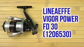 Розпакування Lineaeffe Vigor Power FD 30 1206530