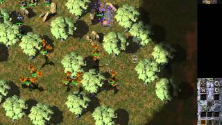 Let's Play Total Annihilation: Kingdoms - Chapter 34