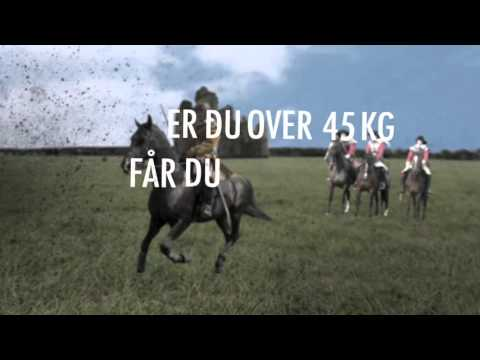 Cavaliers 2016 -  Solguden & Mannen