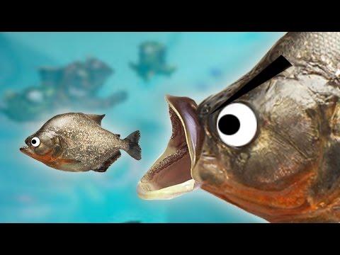 เกมที่ปลาตัวใหญ่กินปลาตัวเล็กอย่างเมามันส์! | Feed And Grow Let's Play (2)