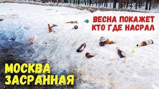 Москва засранная. Собачье дерьмо, мусор, неработающие законы. САО - Дмитровский район.