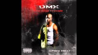 DMX - 2007 - The Dogz Mixtape album