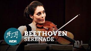 Ludwig van Beethoven - Serenade D-Dur op. 8   WDR Sinfonieorchester