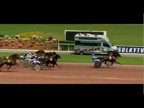 Prix De New York 2012_The Best Madrik_J.Et. Dubois 1:16,4