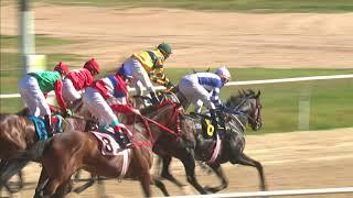 Vidéo de la course PMU HARDINESS HANDICAP