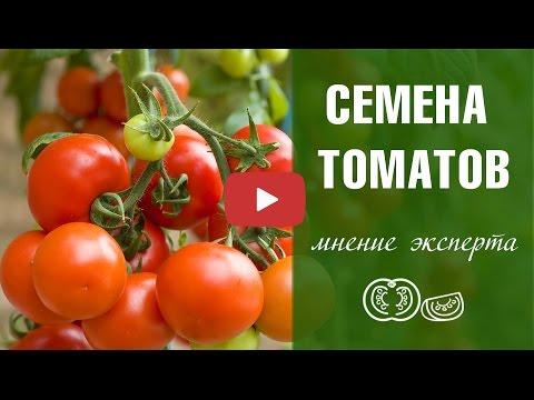 Семена томатов 🍅 Лучшие сорта 🍅сад и огород с Хитсад