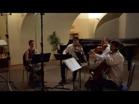 W. A. Mozart Oboe quartet F major (Barbora Trncikova) 1st mvt