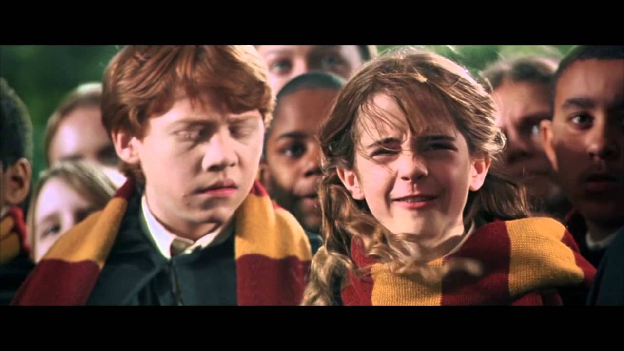 Harry Potter and the Chamber of Secrets - Every Harry, Ron ...