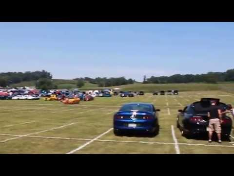 American Muscle Mustang Show Aug.15, 2015
