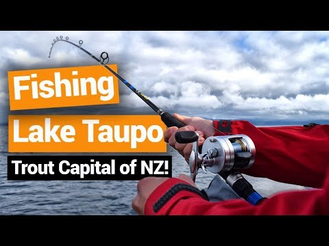 Trout Fishing On Lake Taupo – New Zealand's Biggest Gap Year – Backpacker Guide New Zealand