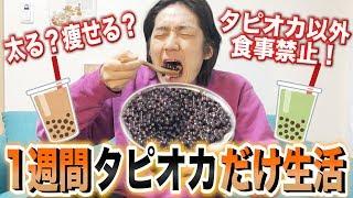 【検証】人は1週間タピオカだけを食べ続けて生活できるのか?【縛り生活】 thumbnail