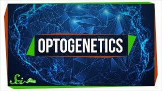 Optogenetics: Using Light to Control Your Brain
