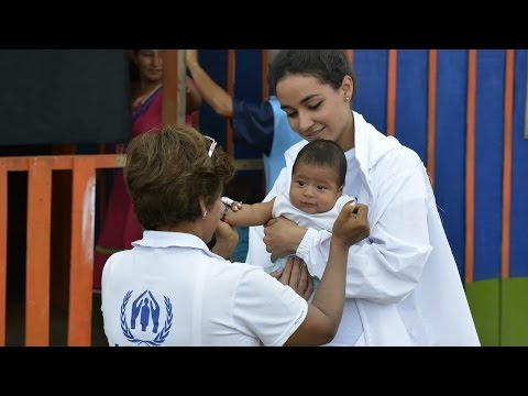 Working for UNHCR