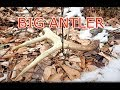 Shed hunting 2018 Tips & Tactics for NY, NH, VT, ME, MA(Public Land Series Part 1)
