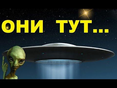 Вентиляторы ufo. Купить вентиляторы ufo. Интернет-магазин фокстрот. Гарантия качества. Доставка по украине.