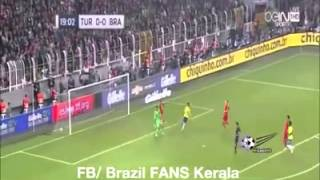 Brazil Fans Song For 2015 Copa America
